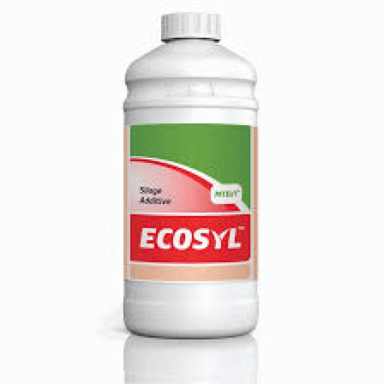 Žolės siloso inokuliantas Ecosyl 100