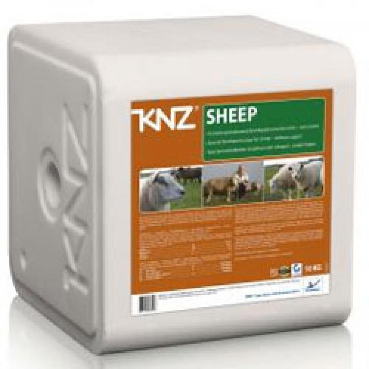 Laižomoji druska avims - KNZ Sheep